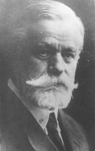Petre Dulfu